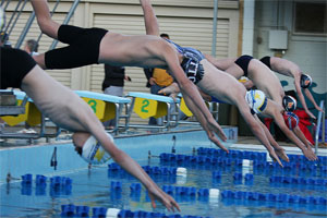 swimmers diving off the blocks